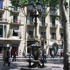 Canaletas Fountain photo (0)