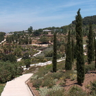 Montjuic Gardens photo (0)