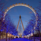 London Eye photo (2)
