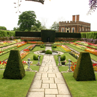 Hampton Court Palace photo (5)