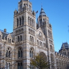 Natural History Museum photo (1)