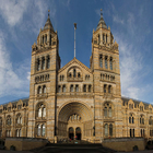 Natural History Museum photo (0)