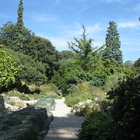 Jardin des Plantes photo (1)