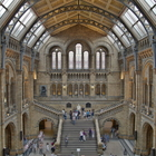 Natural History Museum photo (2)