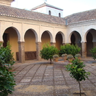 The Great Mosque of Granada photo (7)