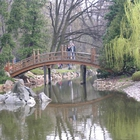 Japanese Garden in Wroclaw photo (7)