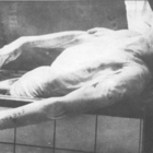 Auschwitz concentration camp photo (8)