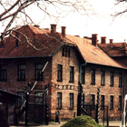 Auschwitz concentration camp photo (1)