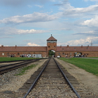 Auschwitz concentration camp photo (0)