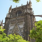 Seville Cathedral photo (12)