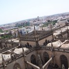 Seville Cathedral photo (7)