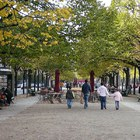 Unter den Linden			 photo (10)
