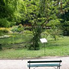 Zagreb Botanical Garden photo (5)
