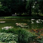 Zagreb Botanical Garden photo (0)