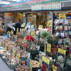 Bloemenmarkt photo (4)