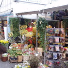 Bloemenmarkt photo (3)