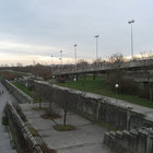 Donauinsel photo (16)