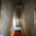 Palais des Papes photo (30)