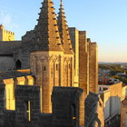 Palais des Papes photo (28)