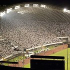 Stadion Poljud photo (12)